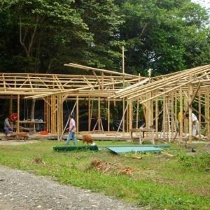 We need Sustainable, Climate Friendly Materials for Construction; Bamboo can be our answer