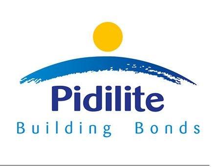 Pidilite Wrap Seal Plus Fiberglass Repair Tape Building And Interiors