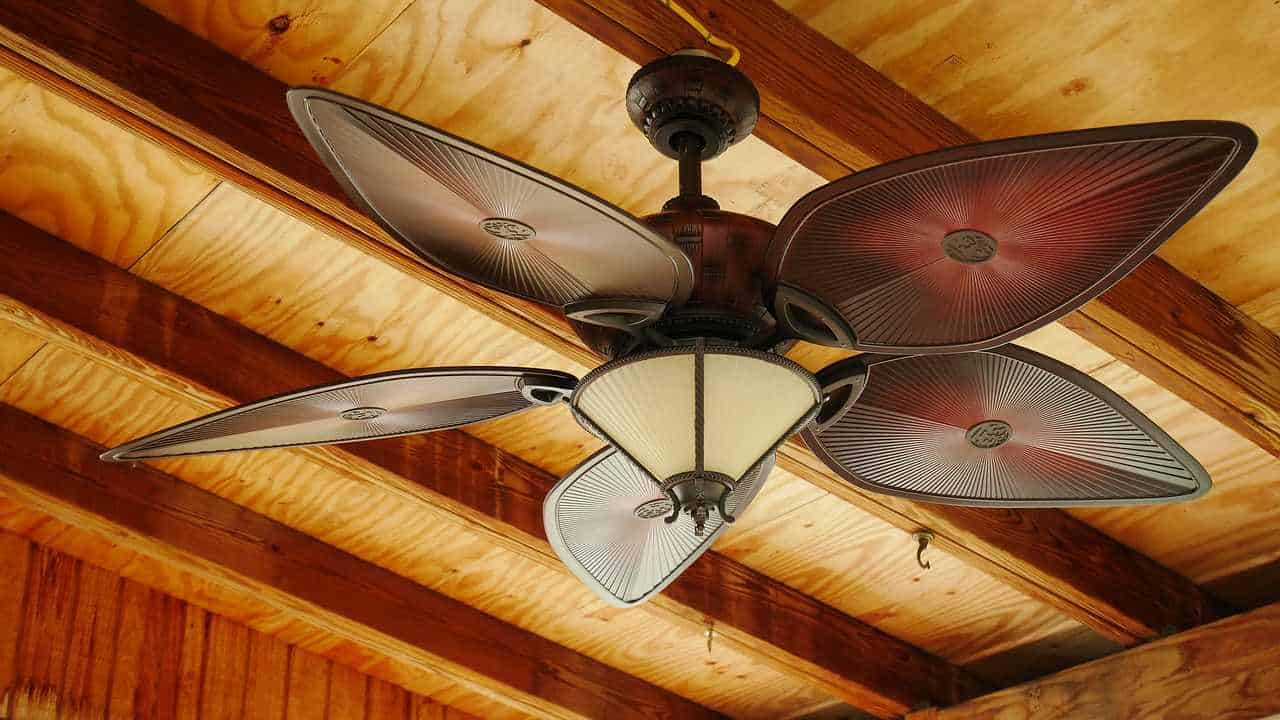 How to choose the best ceiling fans for your building?