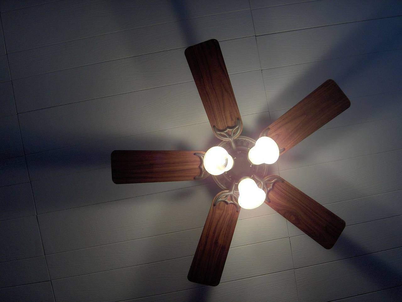 home appliance for air circulation
