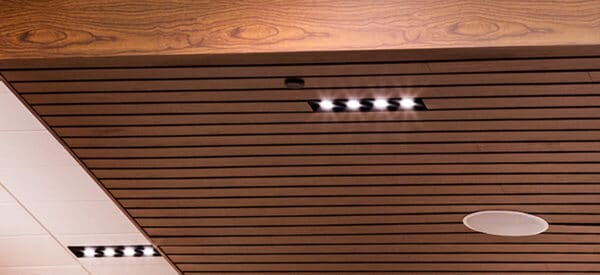 Hunter Douglas Metal Woodprint Exterior Ceiling