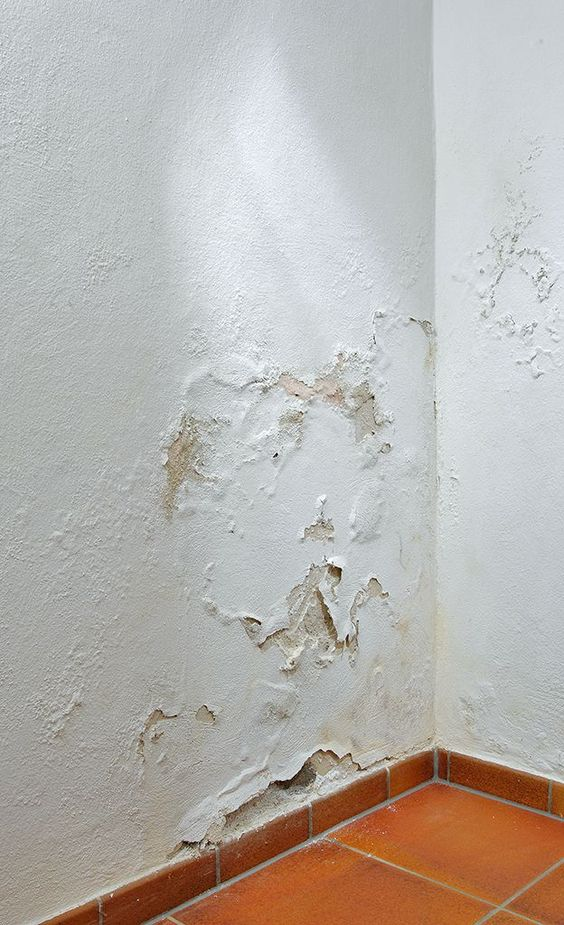 Seepage and chipping walls