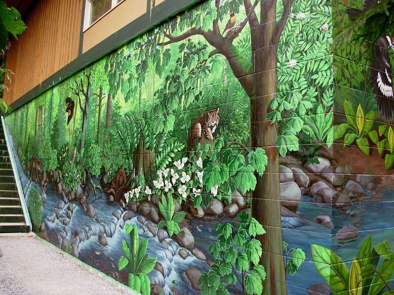 jungle theme pinted mural walls