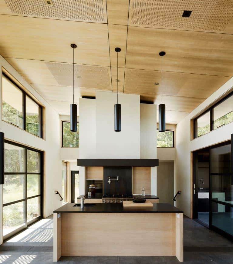 home design with plywood ceiling and ceiling lights