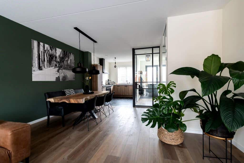 saturated green wall design among other white walls