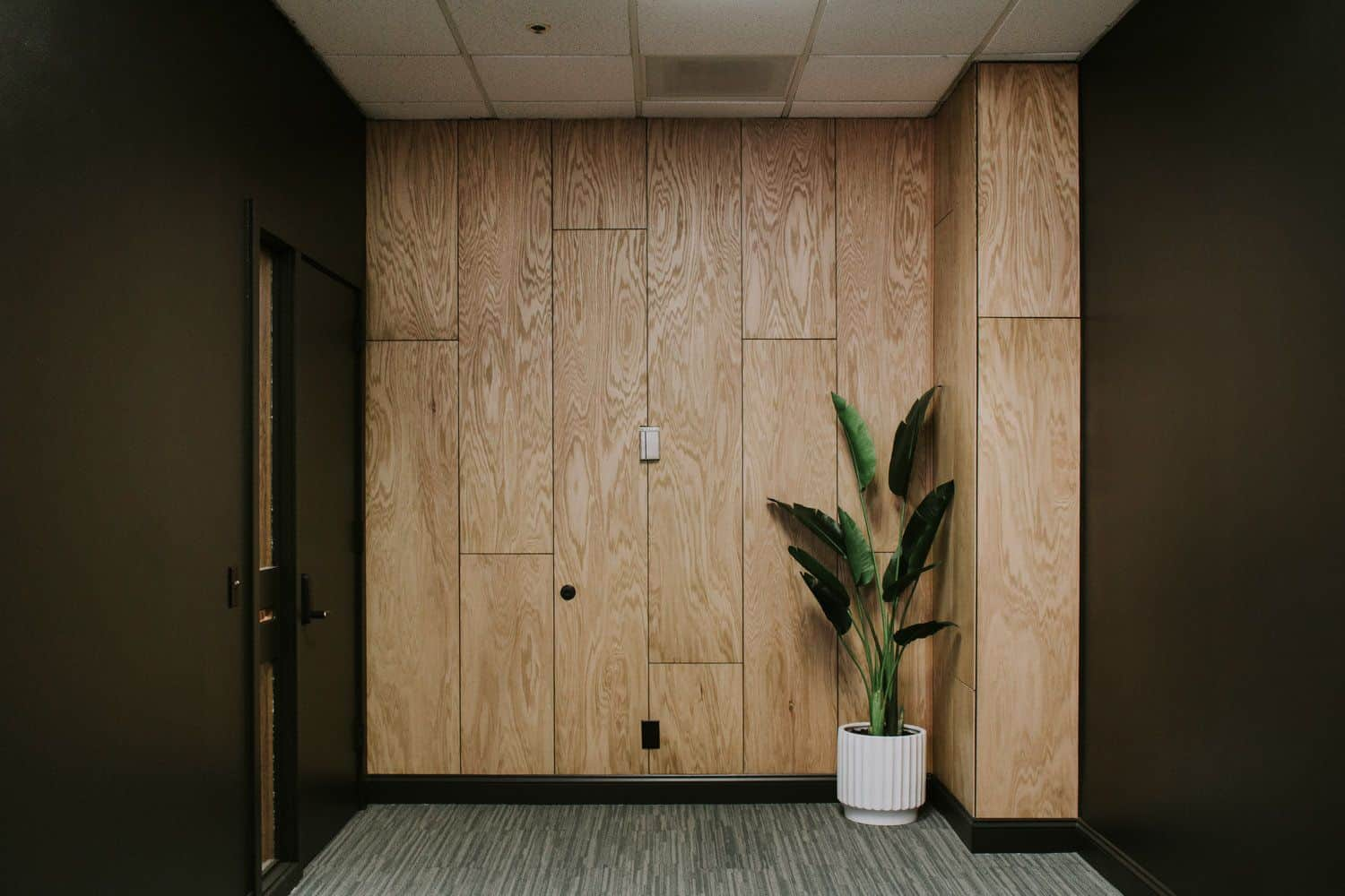 plywood wall design with grey single sofa and a green plant