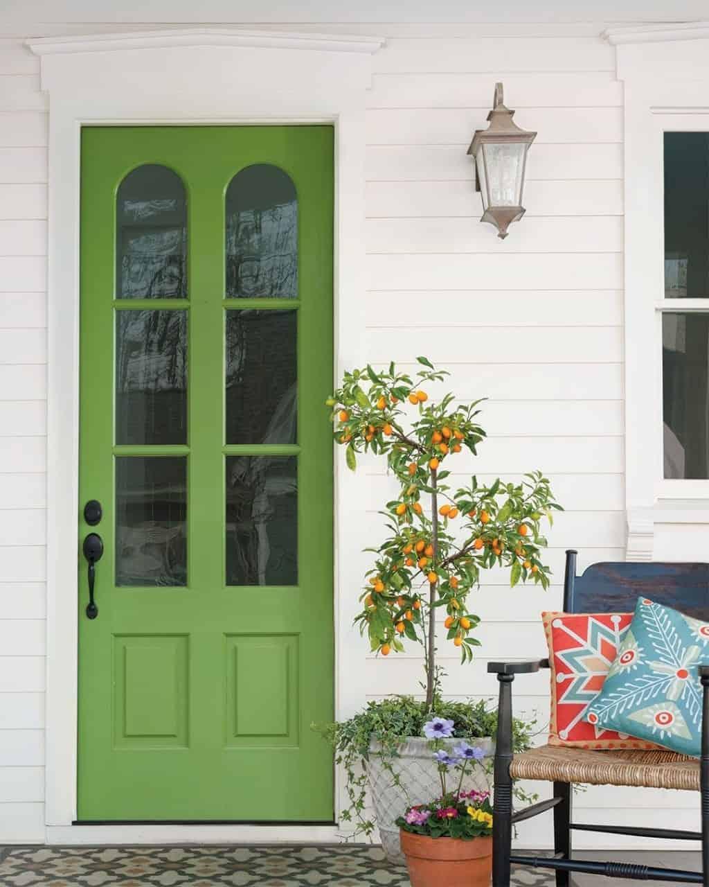 green door with glass panels and black metal handle