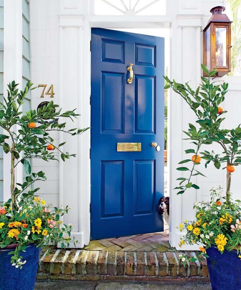 cobalt blue blue front door; wood door design