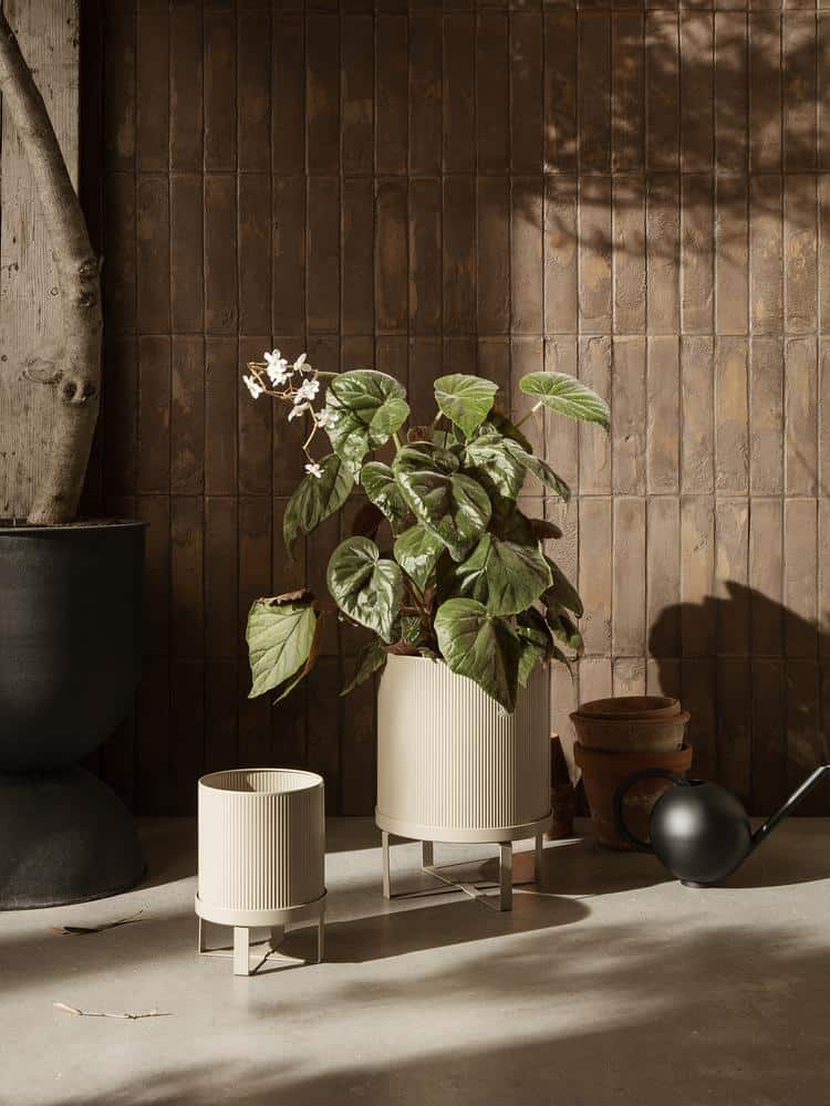 elevated pots and stands suitable for bonsai