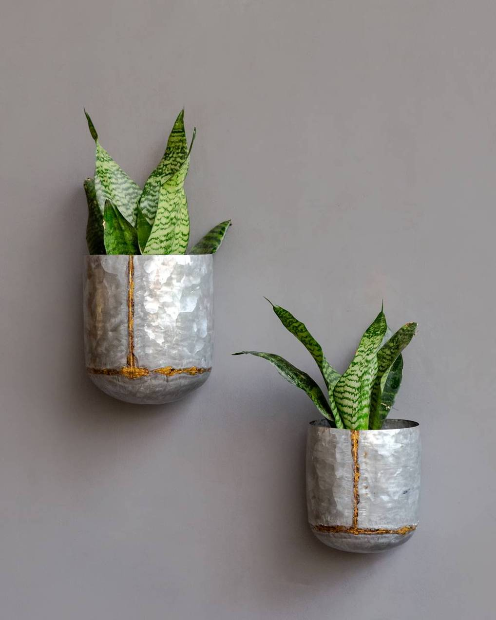 Ian Galvanished Wall Planter by The Purple Turtles