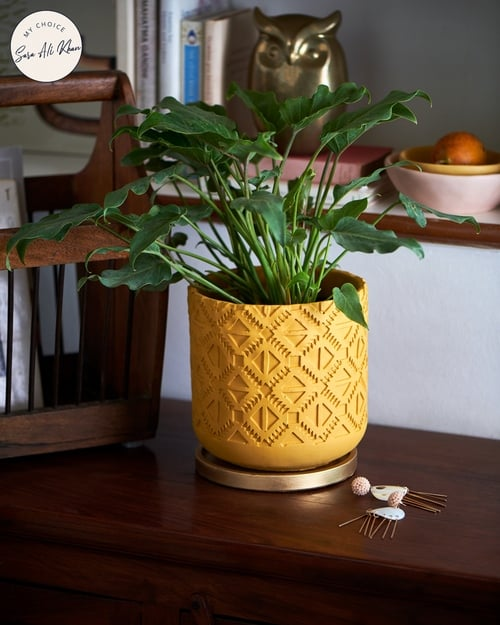 Carved Planter by CHUMBAK