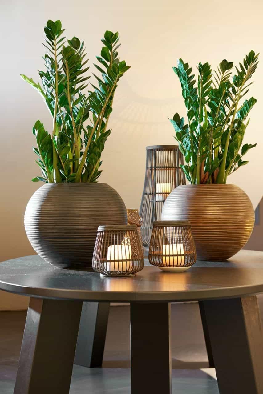 brass metal planters