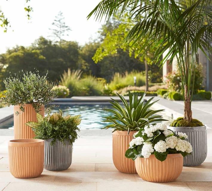 Concrete fluted terracotta pots also suitable for bonsai
