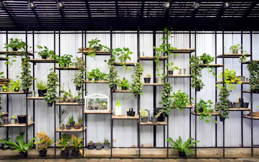 indoor vertical garden stand