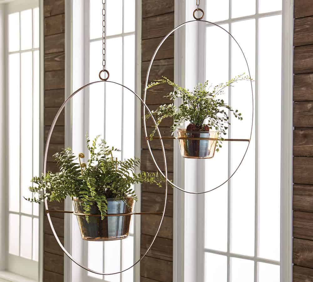 Iron hanging planters, not ideal for bonsai