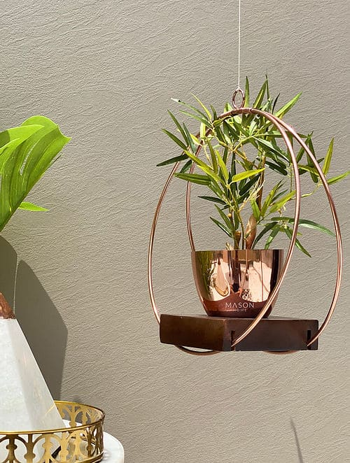 rose gold hanging planter