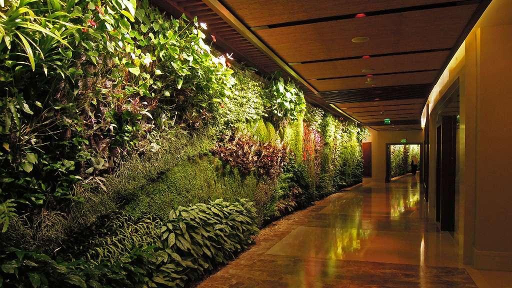 vertical garden for indoors